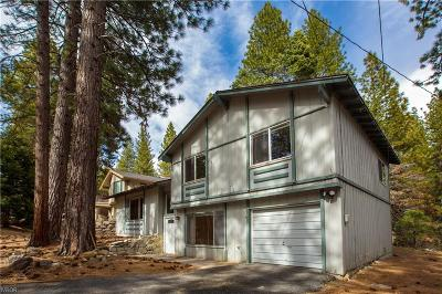 Incline Village Single Family Home For Sale: 206 Allen Way