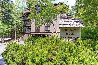 Incline Village Condo/Townhouse For Sale: 333 Ski Way #252
