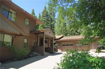 Incline Village Single Family Home For Sale: 982 Wedge Court