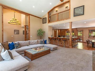 Incline Village Single Family Home For Sale: 1076 Mill Creek Road