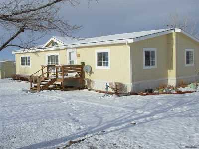 Yerington NV Manufactured Home For Sale: $92,500