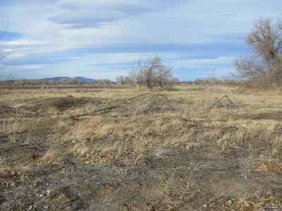 Yerington Residential Lots & Land Extended: 6 Ashley Drive