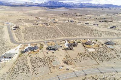 Minden Residential Lots & Land For Sale: 1841 Painted Desert #32