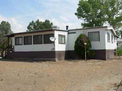 Wellington NV Manufactured Home Sold: $75,000