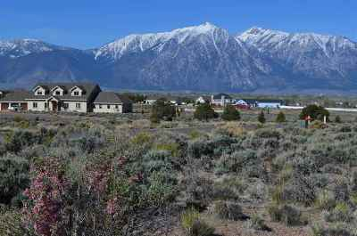 Gardnerville Residential Lots & Land For Sale: 1149 Cortez Lane