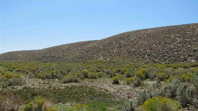 Reno Residential Lots & Land For Sale: 08 Petersen Drive