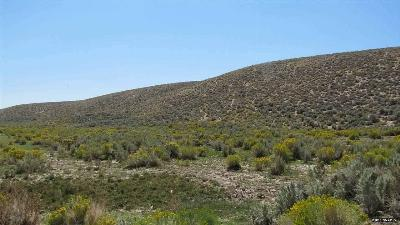 Reno Residential Lots & Land For Sale: 09 Petersen Drive