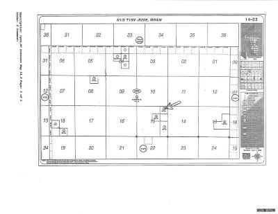 Yerington Residential Lots & Land For Sale: Unspecified
