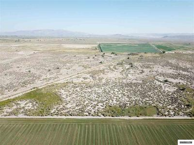 Yerington Residential Lots & Land For Sale: 160 Ac North Mason Valley