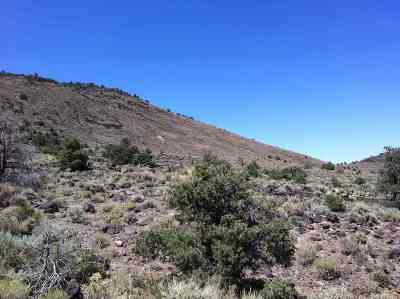 Residential Lots & Land For Sale: Lot 110d Wild Horse Run