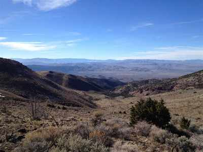 Reno Residential Lots & Land Active/Pending-Call: 2955 Cougar Drive