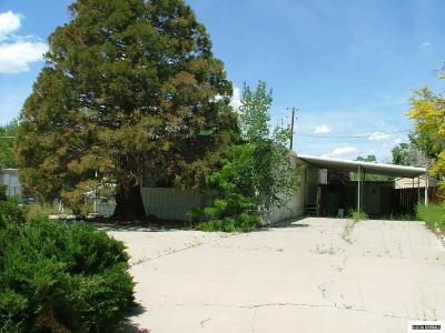Carson City NV Manufactured Home Sold: $80,000