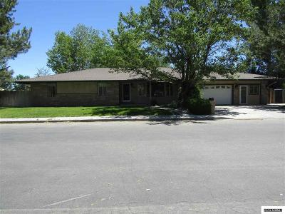 Yerington NV Single Family Home Sold: $235,000