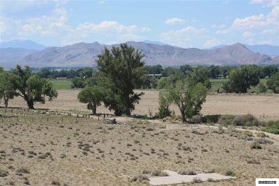 Yerington Residential Lots & Land For Sale: 778 Hwy 208