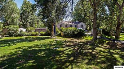 Washoe County Single Family Home For Sale: 2050 Holcomb Ranch Lane
