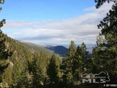 Reno Residential Lots & Land For Sale: 20705 Old Mount Rose Hwy