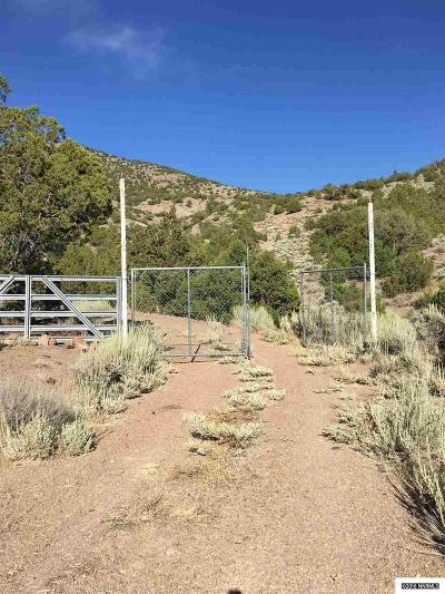 Residential Lots & Land For Sale: 2400 Piute Creek Road