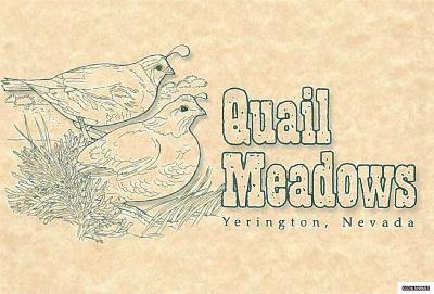 Yerington Residential Lots & Land For Sale: 400 Deer Run Road