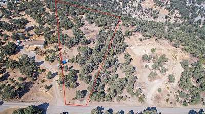 Reno Residential Lots & Land For Sale: 1920 Morgan Road