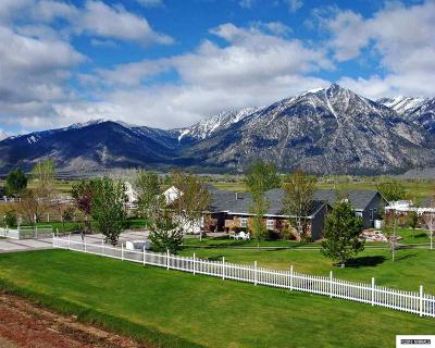 Gardnerville Single Family Home For Sale: 1021 Country Lane