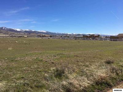 Reno Residential Lots & Land For Sale: 1300 Whiskey Springs