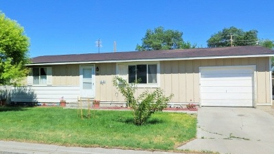 Battle Mountain Single Family Home For Sale: 480 Elquist Drive
