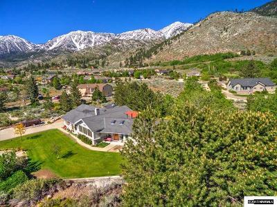 Gardnerville Single Family Home For Sale: 210 Mott Court