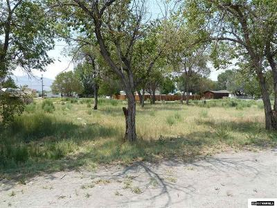 Yerington Residential Lots & Land For Sale: 217 N Center Street