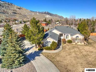 Gardnerville Single Family Home Active/Pending-Loan: 224 Peach Court