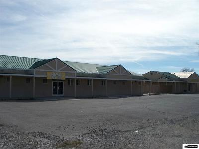 Fallon NV Commercial For Sale: $695,000
