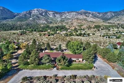 Gardnerville Single Family Home For Sale: 1176 Foothill Rd.