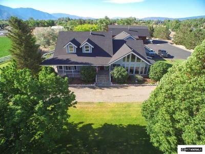 Gardnerville Single Family Home For Sale: 1048 Kimmerling Road