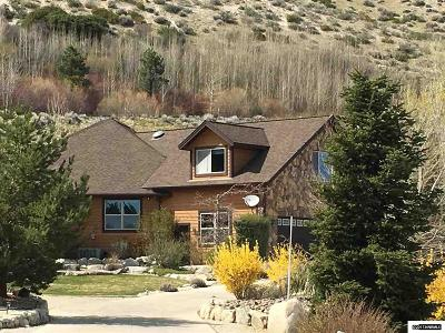 Gardnerville Single Family Home For Sale: 176 Taylor Creek