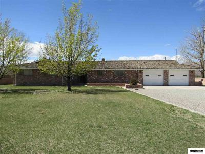 Yerington Single Family Home For Sale: 167 Hwy 208