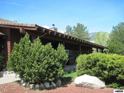 Gardnerville Single Family Home For Sale: 1000 Foothill Road