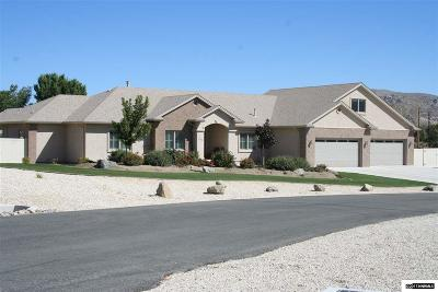Carson City Single Family Home For Sale: 832 Coffey Dr