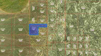 Battle Mountain Residential Lots & Land For Sale: 735 Faded Sage Drive