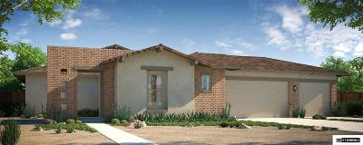 Fernley Single Family Home Active/Pending-Call: 696 Raptor Way