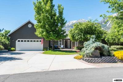 Gardnerville Single Family Home For Sale: 257 Apple Creek Lane