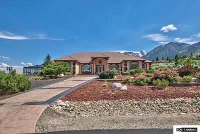 Gardnerville Single Family Home For Sale: 183 Taylor Creek Road