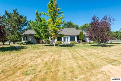 Gardnerville Single Family Home For Sale: 1590 Toler Lane