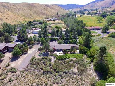 Carson City Single Family Home For Sale: 3050 Kings Canyon