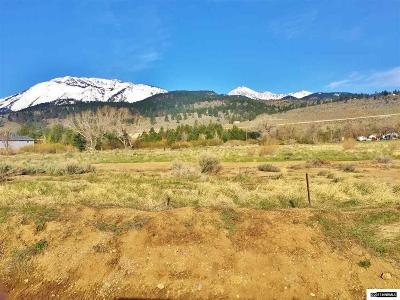 Washoe Valley Residential Lots & Land For Sale: 310 White Pelican Way