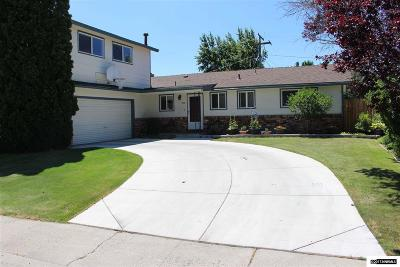 Carson City County Single Family Home For Sale: 805 Ivy Street
