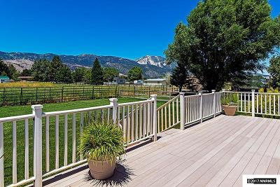 Washoe County Single Family Home For Sale: 299 Steptoe Lane