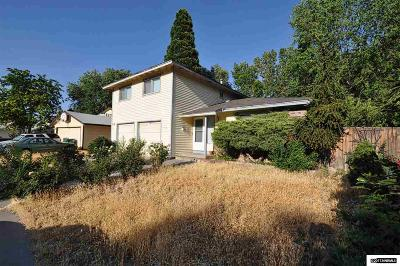 Washoe County Single Family Home For Sale: 7280 Gemstone Drive