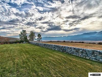 Washoe Valley Residential Lots & Land For Sale: Section 19 T17n-R20e