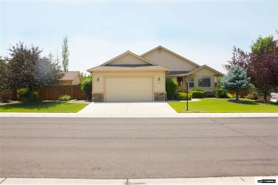 Gardnerville Single Family Home For Sale: 1025 Ranch Dr
