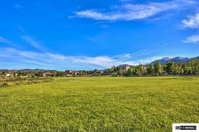 Reno Residential Lots & Land For Sale: 6832 Rabbit Brush
