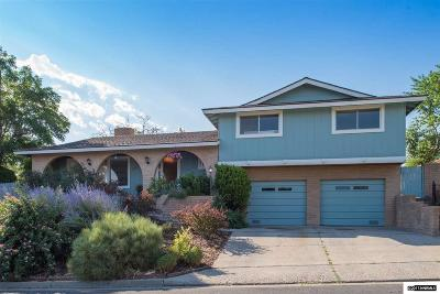 Washoe County Single Family Home New: 3055 Susileen Dr